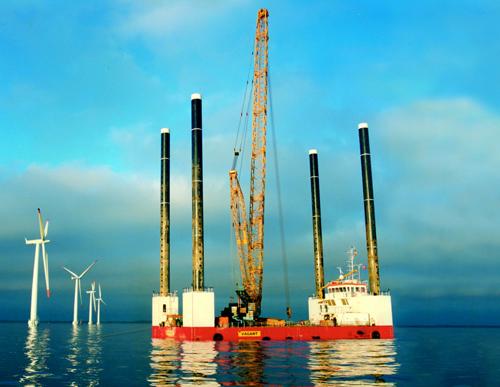 infrastructura offshhore e benefica pentru fauna marina
