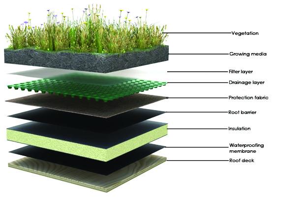 acoperis acoperit cu plante