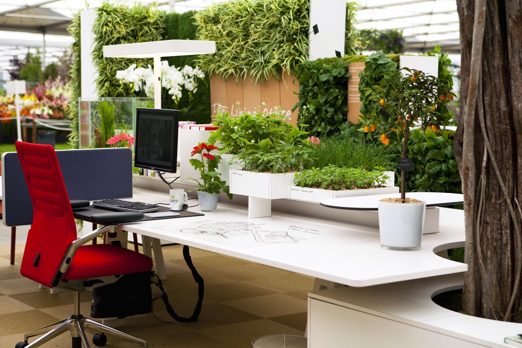 birou eficient energetic