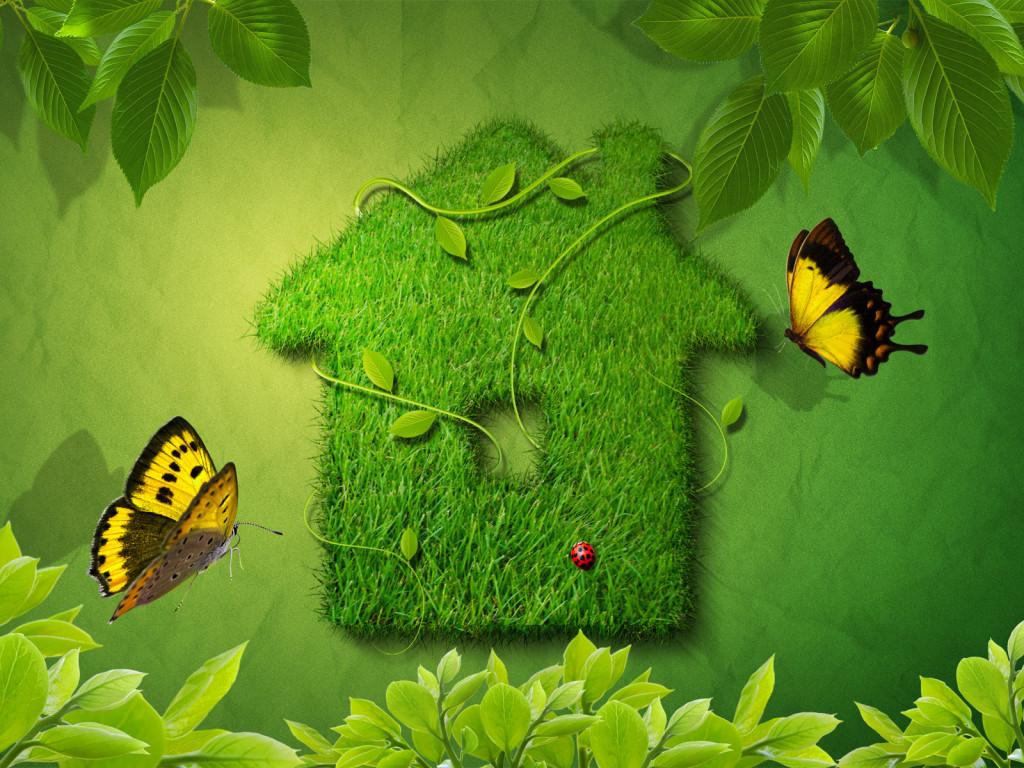 casa_verde_2011.jpg
